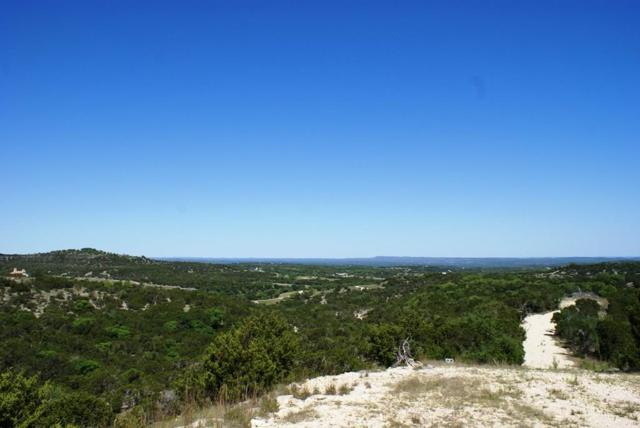 429 Stacey Ann Cv, Dripping Springs, TX 78620 (#5271716) :: Forte Properties