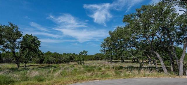 330 Calvary Cv, Dripping Springs, TX 78620 (#5314672) :: First Texas Brokerage Company