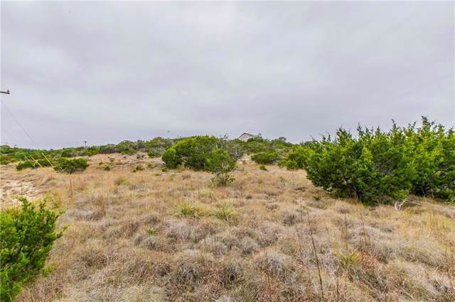 10612 Lake Park Dr, Dripping Springs, TX 78620 (#5319666) :: 12 Points Group