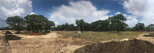 3216 Whitt Park Path, Liberty Hill, TX 78642 (#5324684) :: The Perry Henderson Group at Berkshire Hathaway Texas Realty