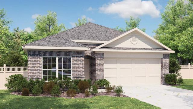 6633 San Isidro Dr, Austin, TX 78744 (#5328535) :: Forte Properties