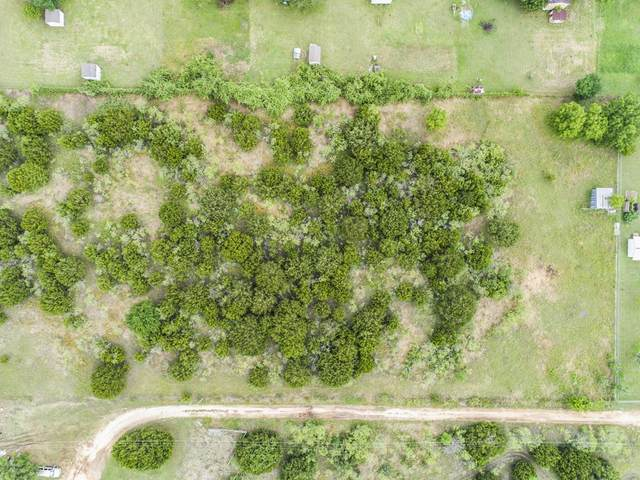 Tract 4 Kelley Ln, Buda, TX 78610 (#5338267) :: The Perry Henderson Group at Berkshire Hathaway Texas Realty