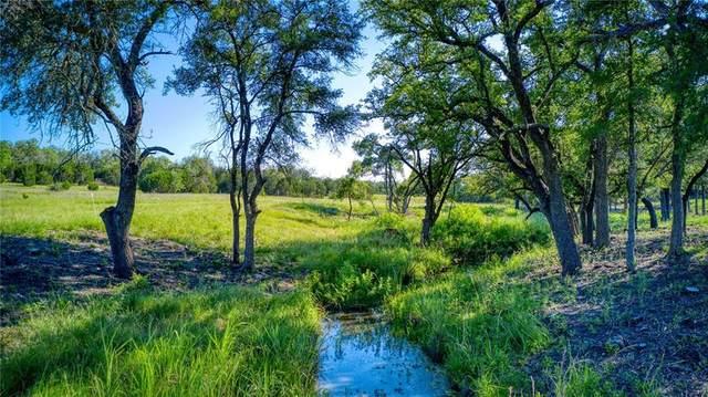 224 County Rd 224, Briggs, TX 78608 (#5344955) :: Watters International