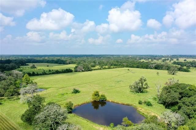 TBD County Road 461, Leona, TX 77871 (#5371204) :: Papasan Real Estate Team @ Keller Williams Realty