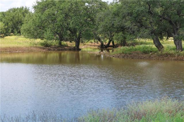00000 Rr3347 Rd, Round Mountain, TX 78663 (#5381003) :: Douglas Residential