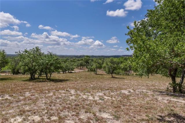 305 A Mussey Rd, Dripping Springs, TX 78620 (#5390061) :: Magnolia Realty
