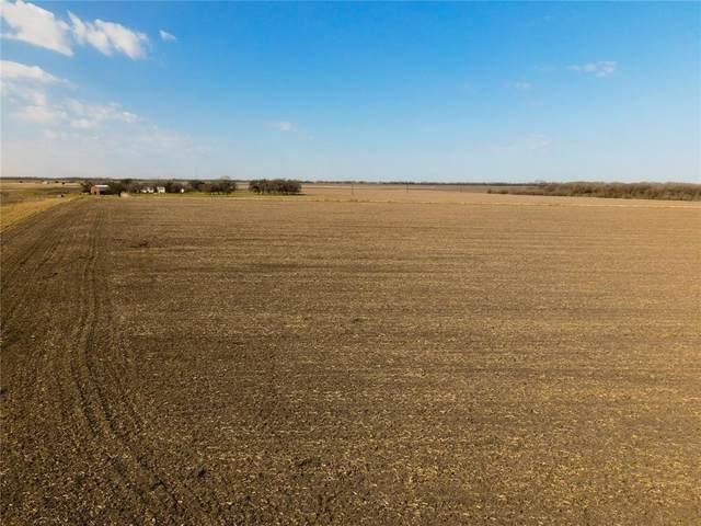 1850 County Road 453 Rd, Taylor, TX 76574 (#5397793) :: Papasan Real Estate Team @ Keller Williams Realty