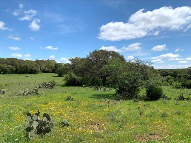 Lot 43 BridleWood Ra Steeplebrook Dr, San Marcos, TX 78666 (#5419087) :: R3 Marketing Group