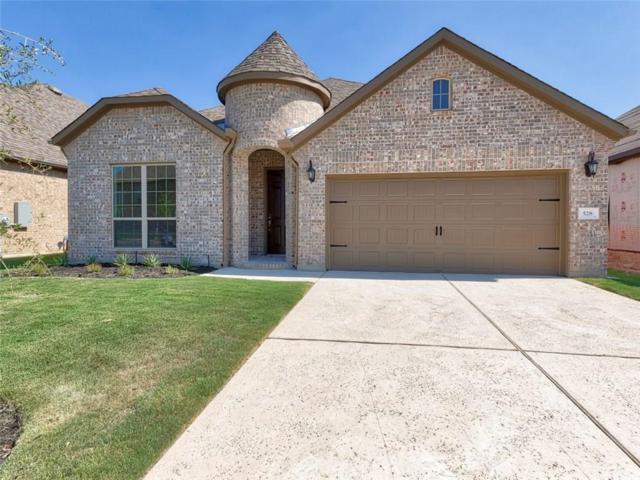 528 Mistflower Springs Dr, Leander, TX 78641 (#5429552) :: The Perry Henderson Group at Berkshire Hathaway Texas Realty