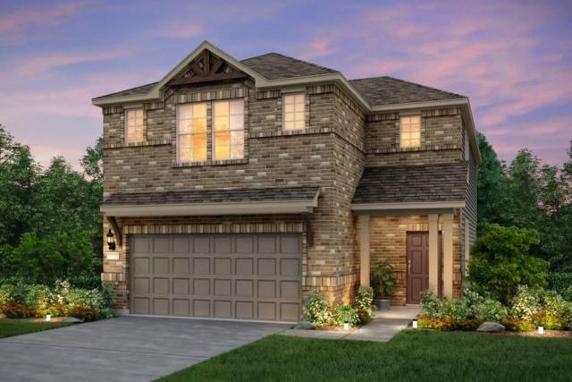 5306 Traviston Dr, Austin, TX 78738 (#5431138) :: Papasan Real Estate Team @ Keller Williams Realty