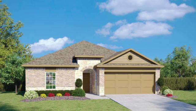 1404 Ferryman Dr, Georgetown, TX 78626 (#5434004) :: Austin Portfolio Real Estate - The Bucher Group