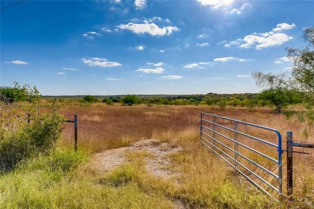 2496 Black Ankle Rd, Lockhart, TX 78644 (#5456512) :: Realty Executives - Town & Country