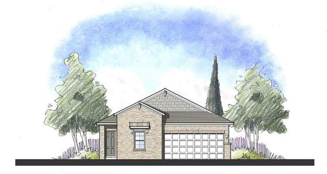 124 Lacey Oak Loop, San Marcos, TX 78666 (#5456840) :: The Perry Henderson Group at Berkshire Hathaway Texas Realty
