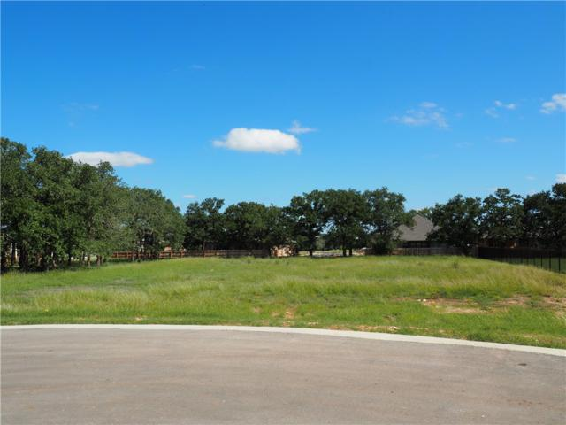 109 Dally Ct, Dripping Springs, TX 78620 (#5462682) :: The Heyl Group at Keller Williams