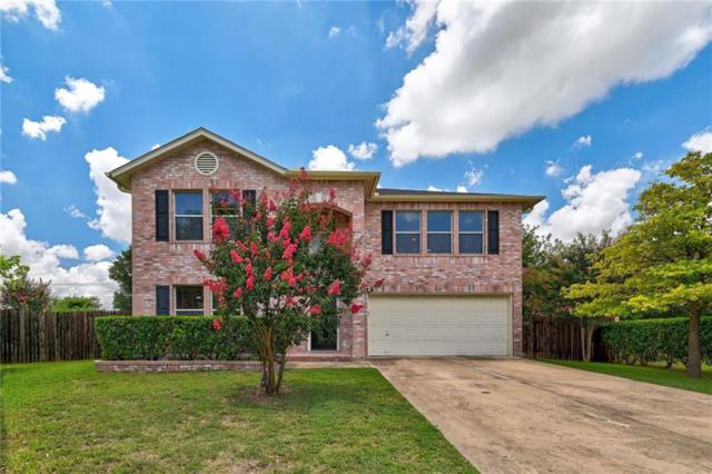 1005 Sheltie Cv, Round Rock, TX 78664 (#5483515) :: The Perry Henderson Group at Berkshire Hathaway Texas Realty
