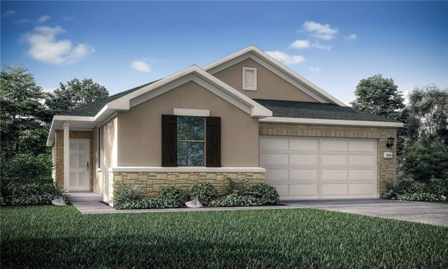 3929 Lyndsey Marie Lane, Pflugerville, TX 78660 (#5487225) :: 12 Points Group