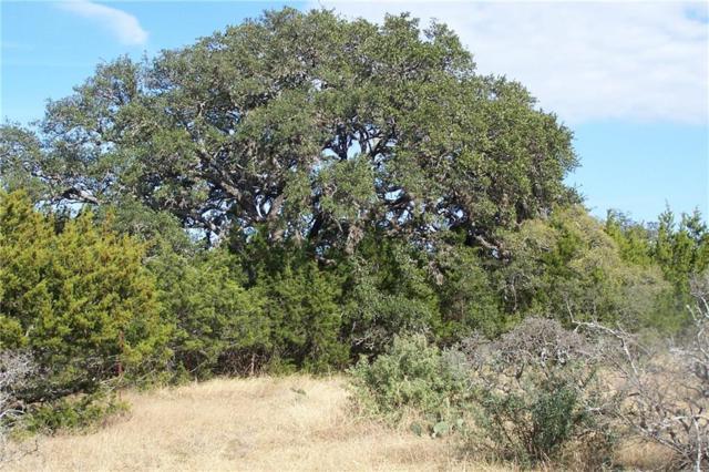6 Althaus Ranch Road, Johnson City, TX 78636 (#5489884) :: Papasan Real Estate Team @ Keller Williams Realty