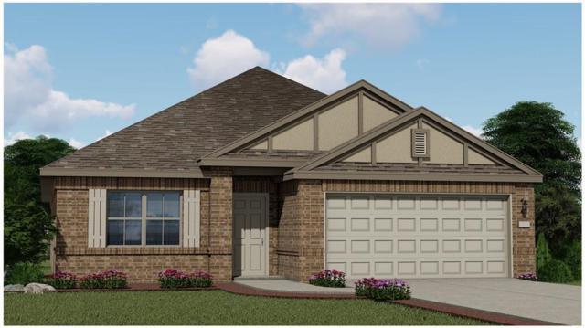 4209 Dutchman Dr, Pflugerville, TX 78660 (#5499634) :: Ana Luxury Homes