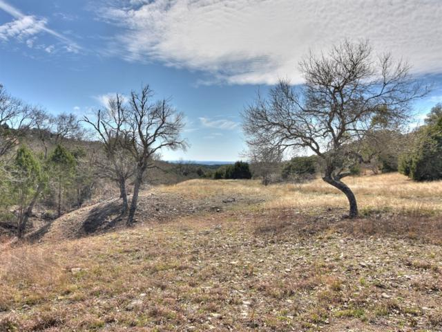 Lot 160A Sierra Dr, Bertram, TX 78605 (#5505788) :: The Perry Henderson Group at Berkshire Hathaway Texas Realty