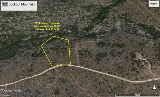 733 Lookout Mtn, Kingsland, TX 78639 (#5527453) :: 12 Points Group