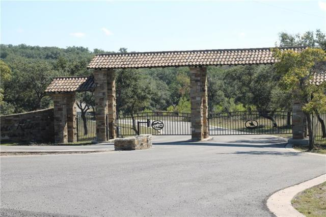 31 Black Buck Ridge, Round Mountain, TX 78663 (#5544585) :: Papasan Real Estate Team @ Keller Williams Realty