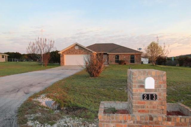 213 County Road 4709, Kempner, TX 76539 (#5558717) :: The Gregory Group