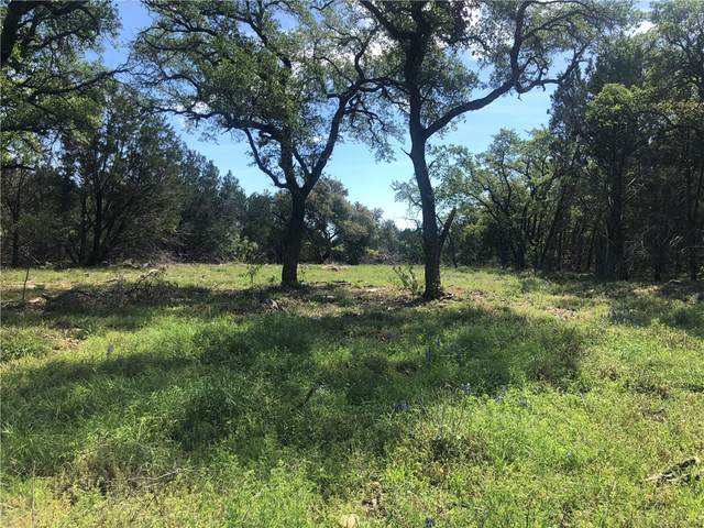 Lot 81 Vista View Trl, Spicewood, TX 78669 (#5579663) :: RE/MAX Capital City