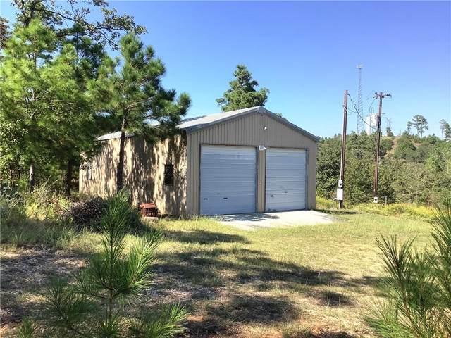 191 Pine Tree Loop, Bastrop, TX 78602 (#5595389) :: Green City Realty