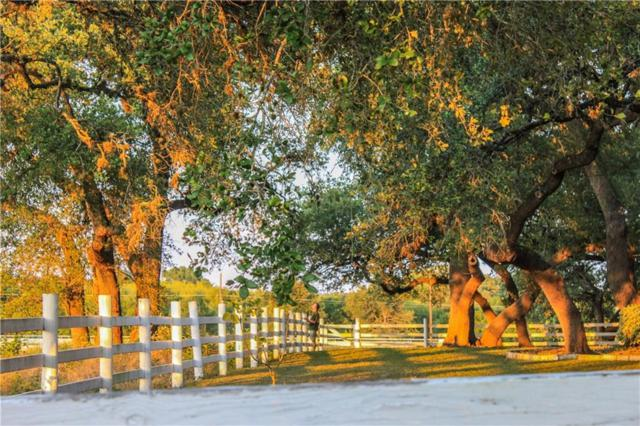 1480 S Fm 1626, Buda, TX 78610 (#5608791) :: Papasan Real Estate Team @ Keller Williams Realty