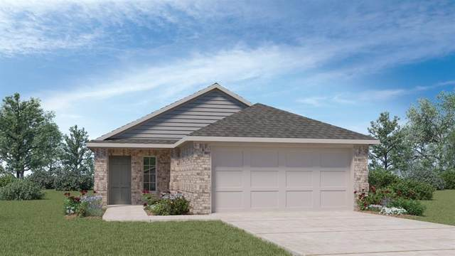 211 Cherry Laurel Ln, Kyle, TX 78640 (#5620380) :: All City Real Estate