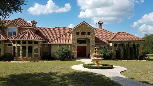 1096 Cielo Springs Dr, Blanco, TX 78606 (#5634912) :: Realty Executives - Town & Country