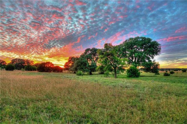 805 Elder Hill Rd, Driftwood, TX 78619 (#5645239) :: RE/MAX Capital City