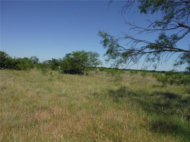 Tract 10 Private Road 3642, Other, TX 76522 (#5666958) :: The Perry Henderson Group at Berkshire Hathaway Texas Realty