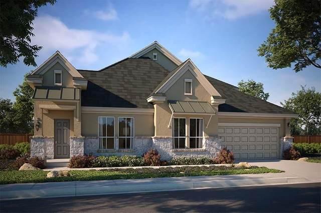 176 Lunar Loop, Dripping Springs, TX 78737 (#5667727) :: Papasan Real Estate Team @ Keller Williams Realty