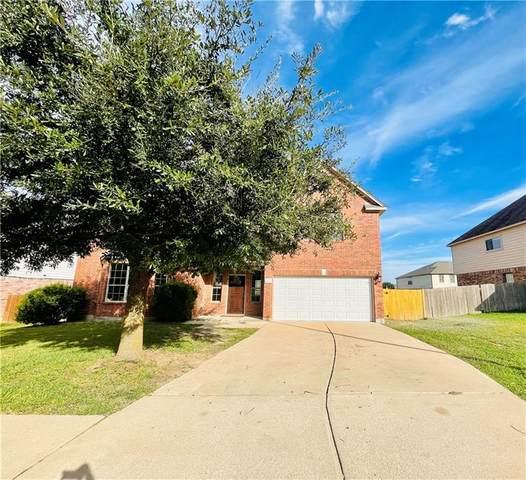 19625 San Chisolm Dr, Round Rock, TX 78664 (#5676582) :: Papasan Real Estate Team @ Keller Williams Realty