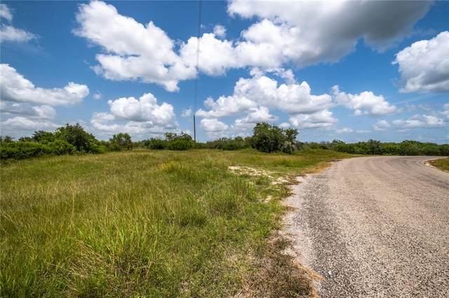 0 County Road 127, Kenedy, TX 78118 (#5681948) :: Papasan Real Estate Team @ Keller Williams Realty