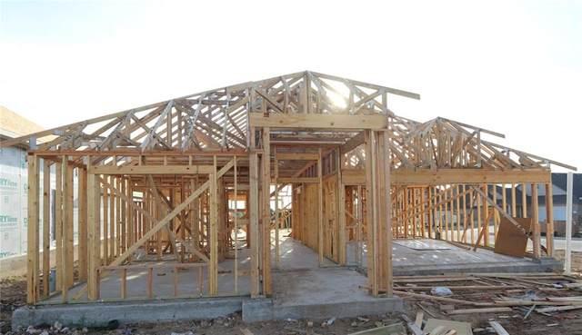 379 Eagle Ford Dr, Kyle, TX 78640 (#5692537) :: Papasan Real Estate Team @ Keller Williams Realty