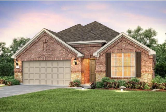 18211 Winnow Way, Pflugerville, TX 78660 (#5699828) :: Realty Executives - Town & Country