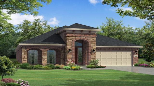 3325 Bianco Ter, Round Rock, TX 78665 (#5706188) :: Papasan Real Estate Team @ Keller Williams Realty