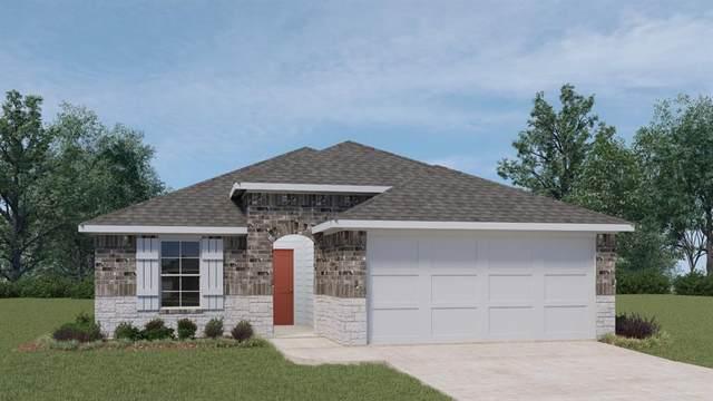 317 Lily Pond Trl, San Marcos, TX 78666 (#5735636) :: Ben Kinney Real Estate Team