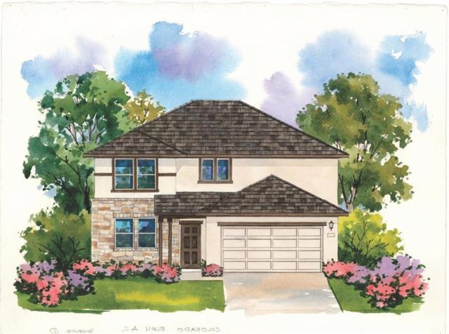 3913 Lyndsey Marie Lane, Pflugerville, TX 78660 (#5740269) :: Ana Luxury Homes