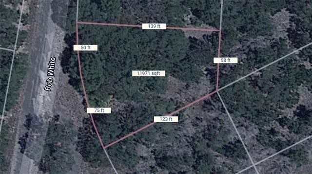 11070 Bobwhite St, Horseshoe Bay, TX 78657 (#5741236) :: Zina & Co. Real Estate