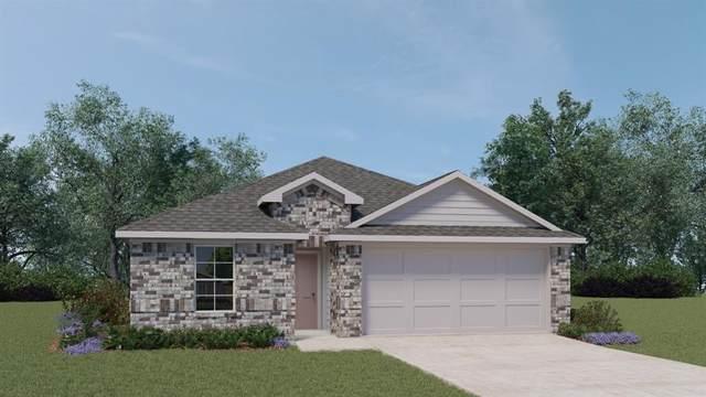 229 Lily Pond Trl, San Marcos, TX 78666 (MLS #5747269) :: Vista Real Estate