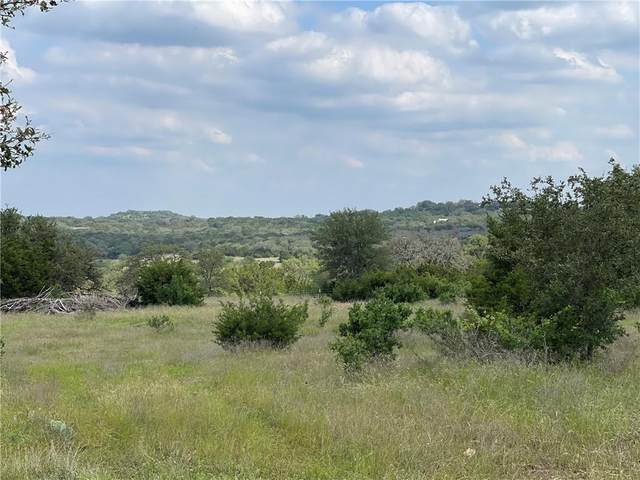 Tract 1 Destiny Hills Dr, Austin, TX 78738 (#5757819) :: Papasan Real Estate Team @ Keller Williams Realty