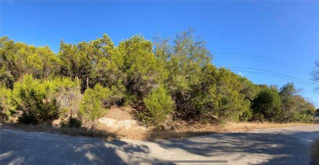 6401 Deer Run, Lago Vista, TX 78645 (#5765384) :: Green City Realty