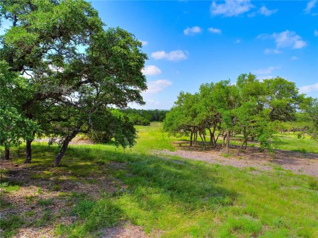 285 Calvary Cv, Dripping Springs, TX 78620 (#5775675) :: The Gregory Group