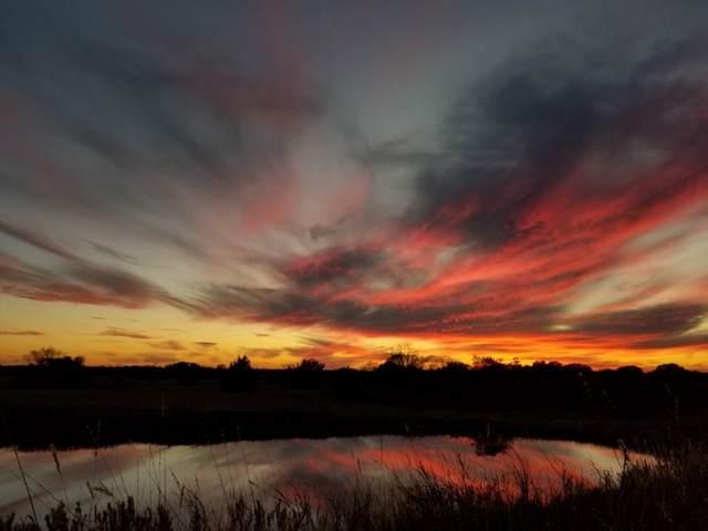 10200 W Old Lockhart Rd, Flatonia, TX 78941 (#5802001) :: Papasan Real Estate Team @ Keller Williams Realty