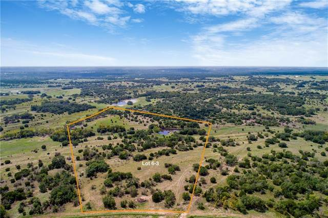Tract 6 Cr 224, Briggs, TX 78608 (#5820692) :: RE/MAX IDEAL REALTY