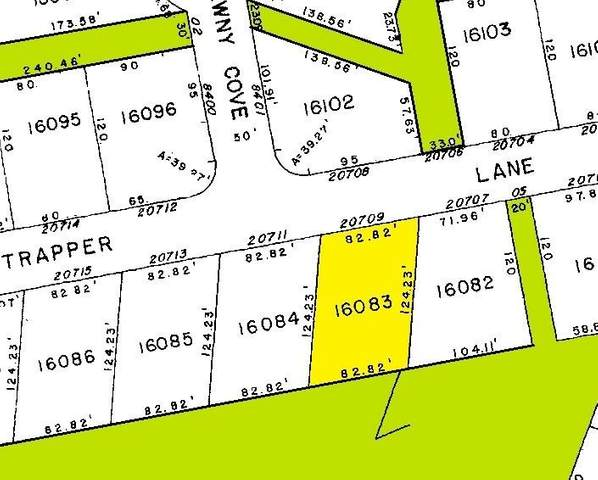 20709 Trapper Ln, Lago Vista, TX 78645 (MLS #5832338) :: Bray Real Estate Group