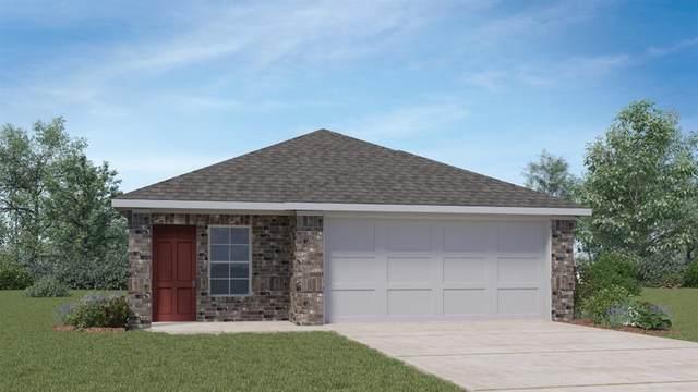 127 Dorchester Dr, Uhland, TX 78640 (#5836169) :: Papasan Real Estate Team @ Keller Williams Realty